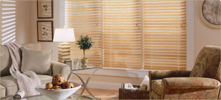 Payless Decor Blinds