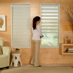 Advantage Horizontal Sheer Zebra Shade-Light Filtering