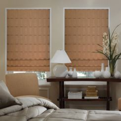 Advantage Fabric Roman Shades